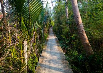 Cycling Hidden Bangkok: Khlong Toey and Bang Kra Jao