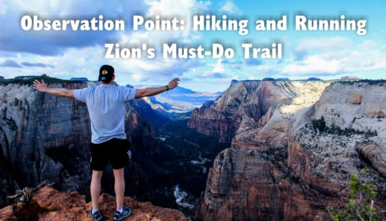 Observation Point: Hiking and Running Zion's Must-Do Trail