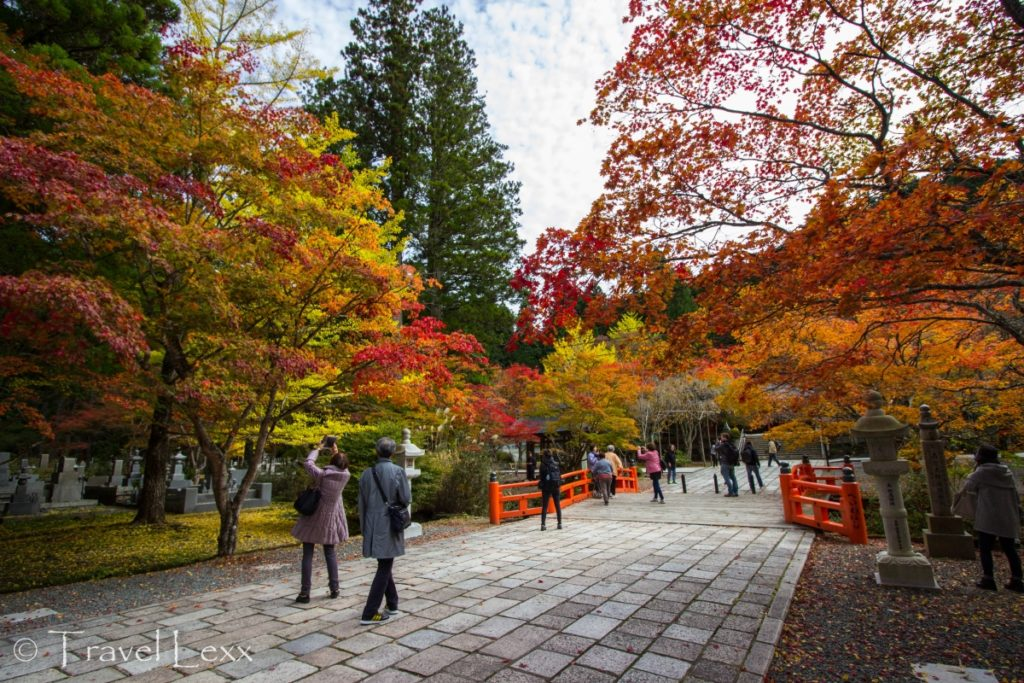 Autumn colours, Okunoin cemetery - 20 Reasons Why You Shouldn't Travel To Japan