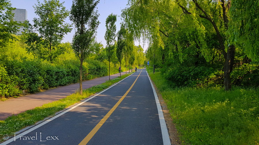 Saetgang Eco Park - Cycling in Seoul