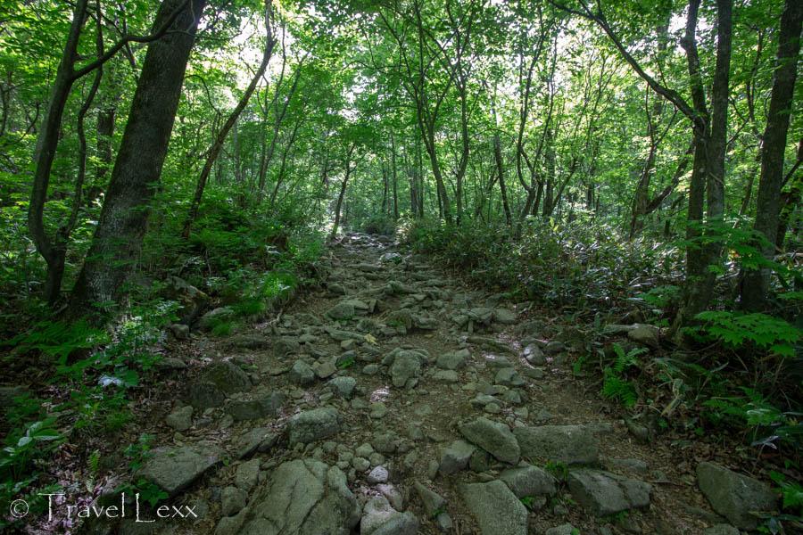 Rocks along the Cheondong Trail in Sobaeksan National Park