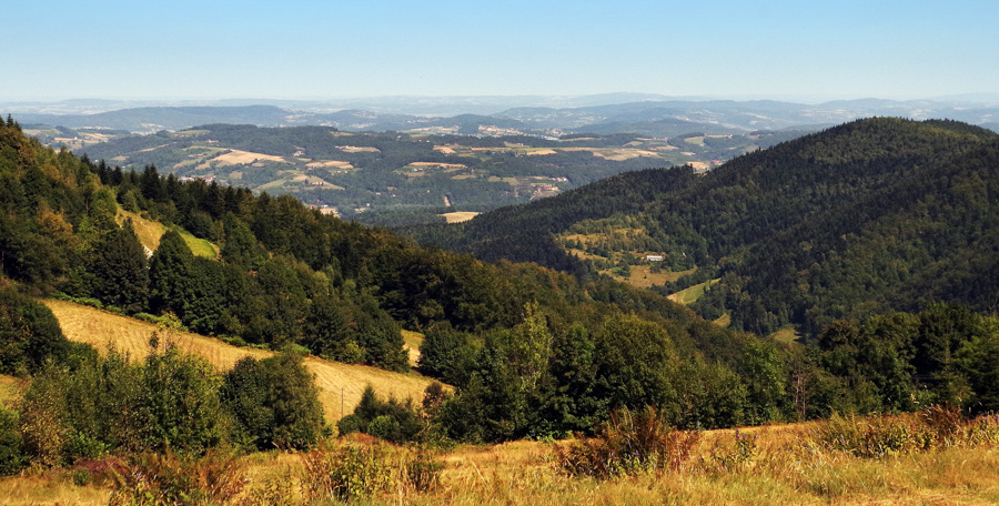 Hills and forests in the region of Beskid Wyspowy in Poland