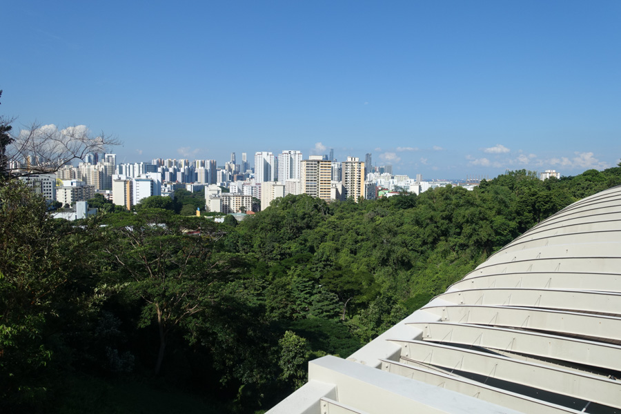 The view of Singapore buildings and a verdant forest from the Henderson Waves pedestrian bridge along the Southern Ridges hiking trail