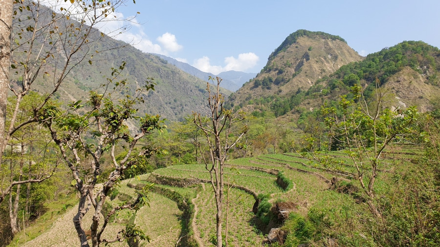 Terraced fields and forested slopes of mountains between Bhulbhule and Bahundanda