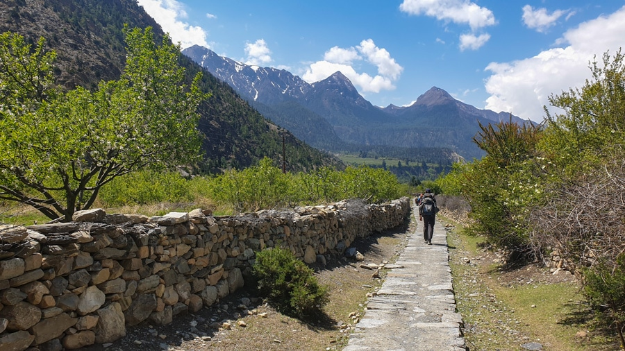Hiker walking past a stone wall on the western side of the Annapurna Circuit Trek