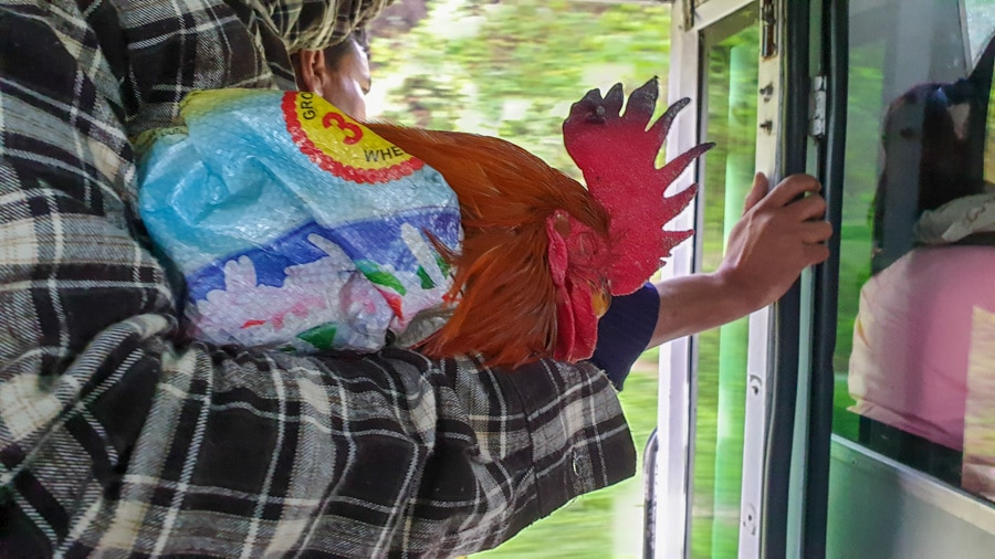 A man holding a sleeping chicken on a bus from Kathmandu to Besisahar