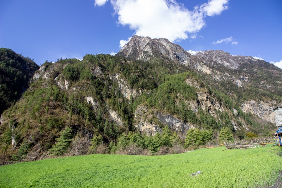 A mountain with trees growing on its slopes overlooking a field