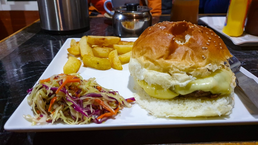 A yak burger, fries and a salad on a square white plate