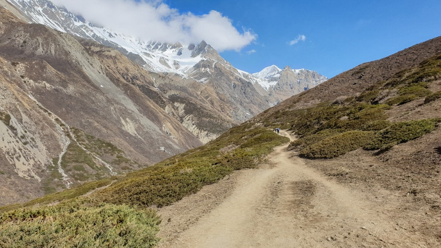 A mountain trail weaving from Yak Kharka to Thorong Phedi towards peaks in the distance
