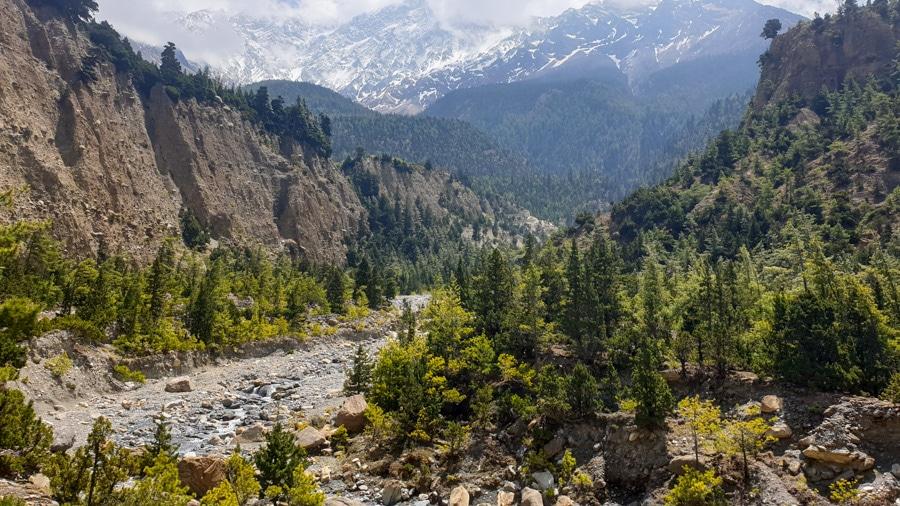 A river flowing through a canyon between mountains