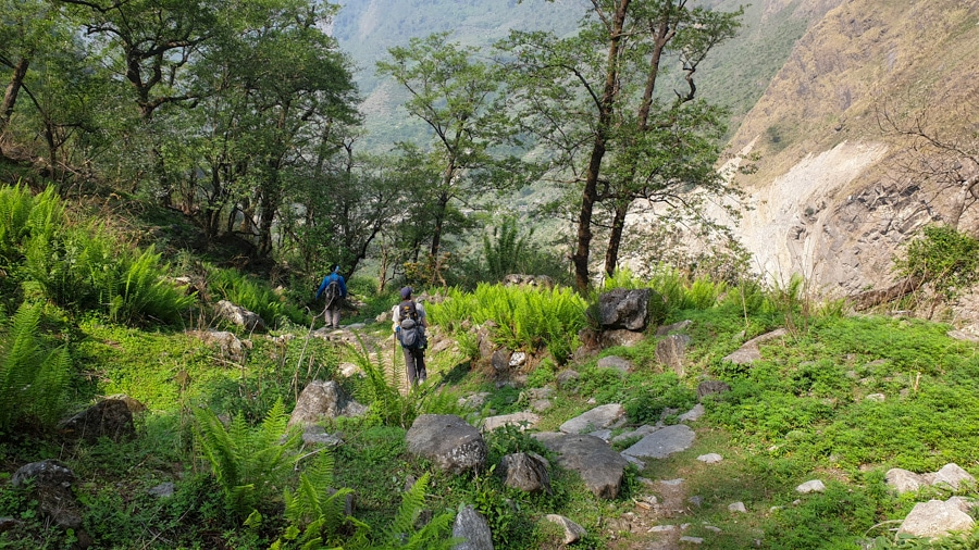 Hikers walking through a lush forest from Ghasa to Tatopani