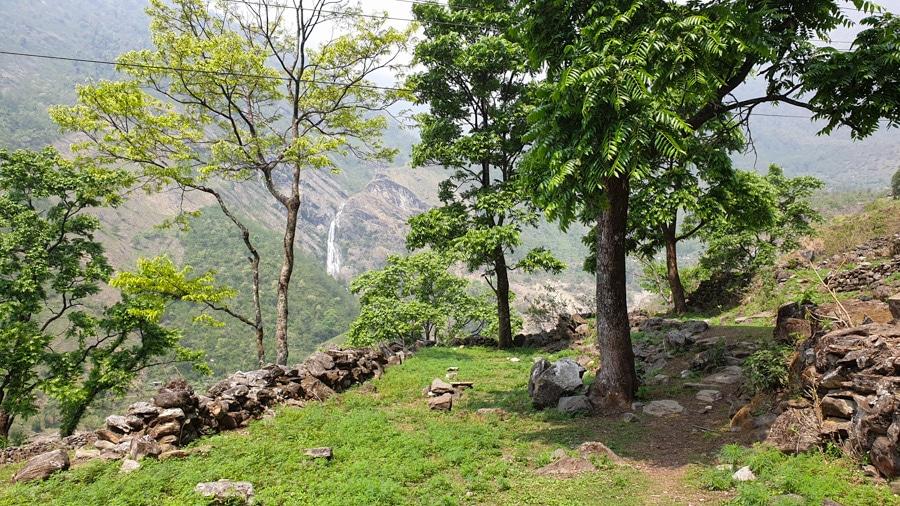 A waterfall seen through trees