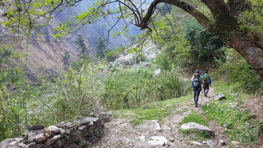 Hikers walking along a narrow path