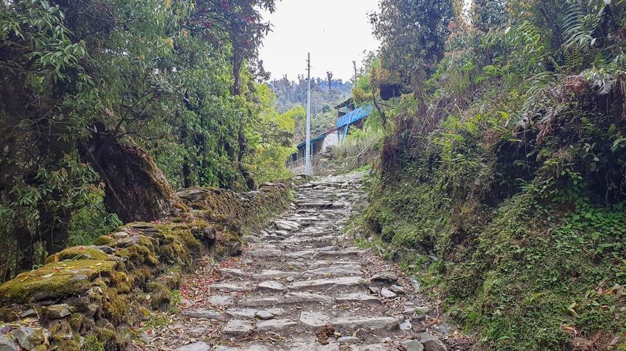 Stone steps on the trail from Tatopani to Ghorepani
